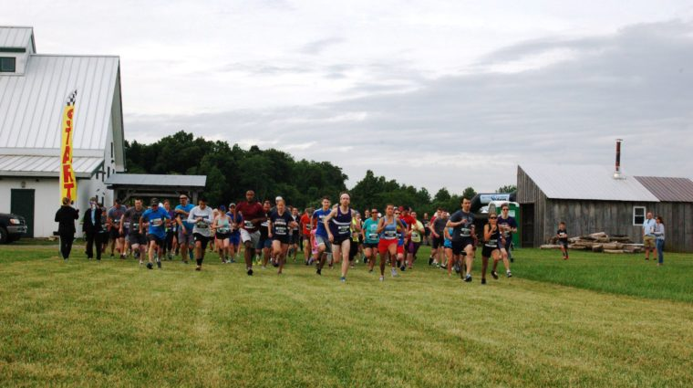 Folks lined up at the starting line for our Farm Fresh 5k. They are running toward the camera from the starting line.