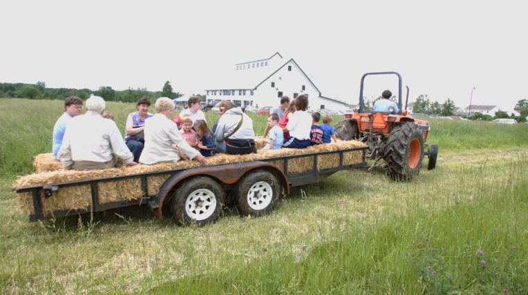 Our 3rd annual field day will, among other things, feature a hay ride around our property.