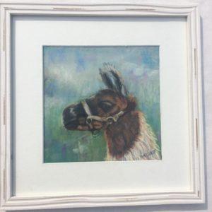 Pastel image of Alejandro (AJ) our llama.