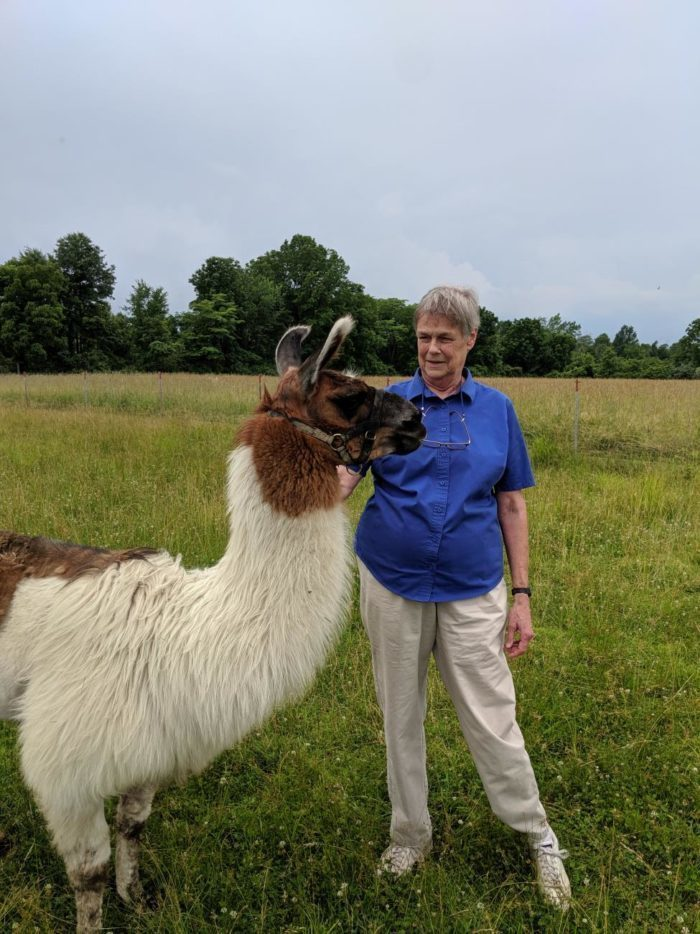 Sr. Marguerite and our resident llama AJ.