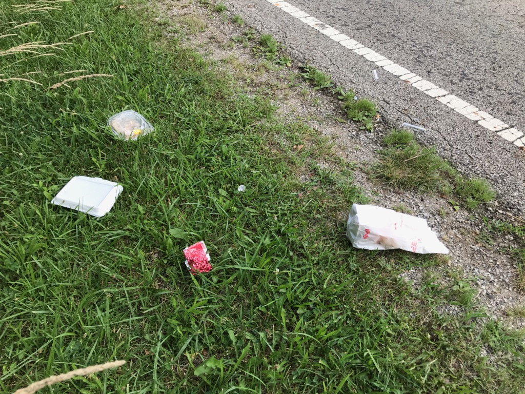 Edge of road at white line next to grass. There is litter in the grass.