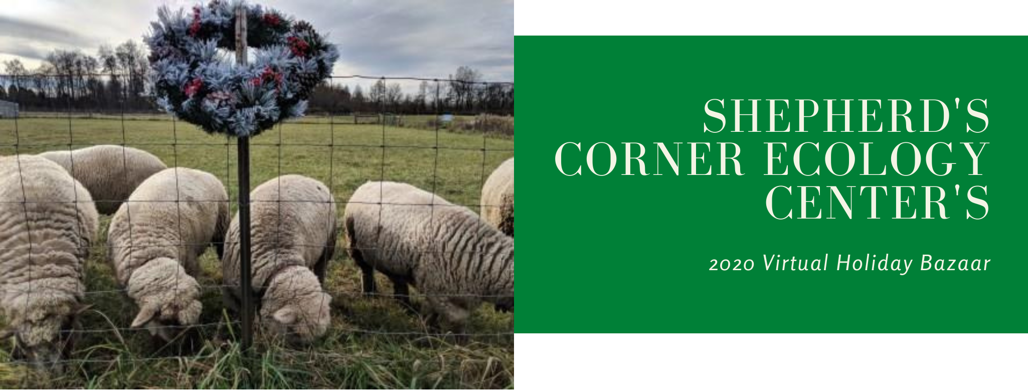 sheep along a fence, with an evergreen wreath. Text reads, Shepherd's Corner Ecology Center's Virtual Bazaar 2020.