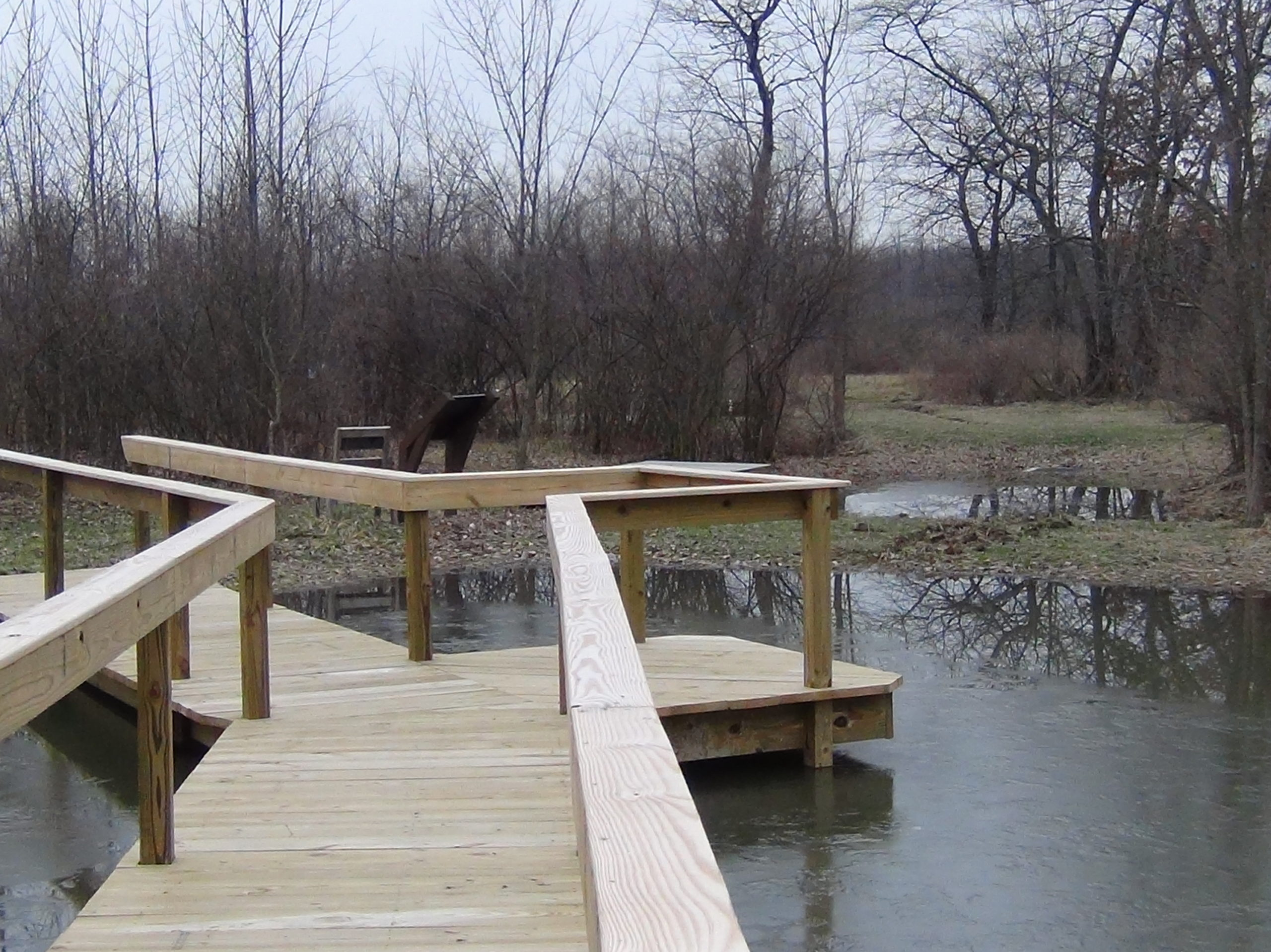 Completed wooden boardwalk over the wetland that is now filled with water.