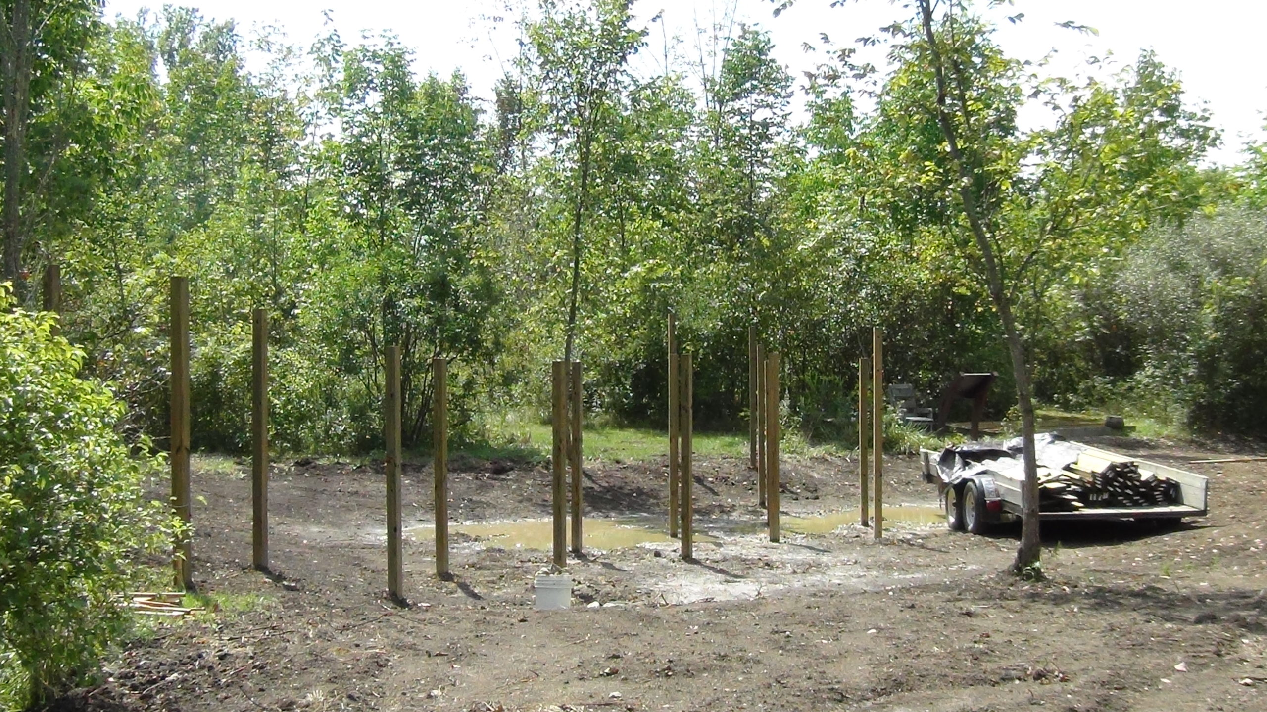 Over 12 4x4 wooden posts inserted into the ground. This is in the same area where the previous pictures are, the space that will be the wetland. These numerous posts will be the base for the walkway over the wetland.